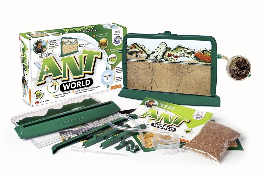 ant world 2