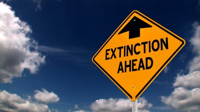 Challenge 7: Calculating Extinction
