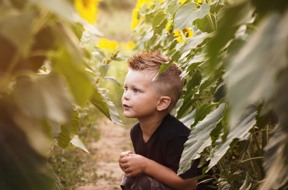boy crouched down in a field of sunflowers