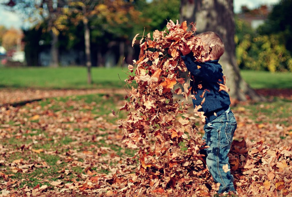 boy throwing up a pile of autumn leaves