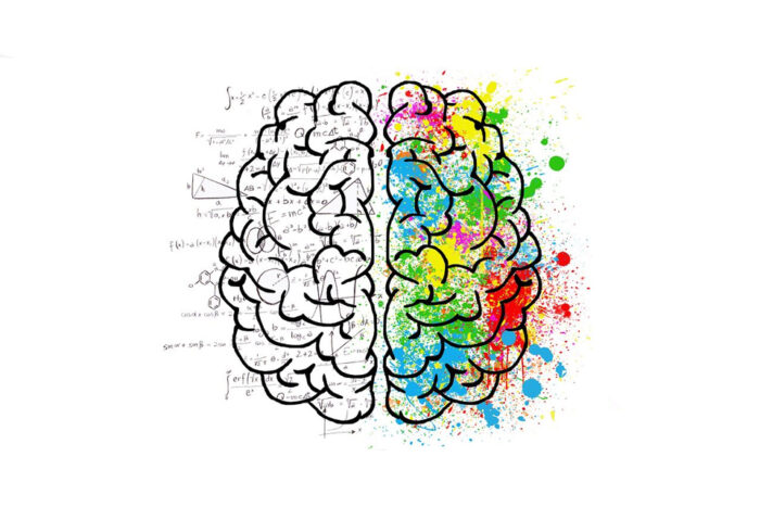 Graphic of the brain one hemisphere marked with science and maths, the other with bright colours for creativity