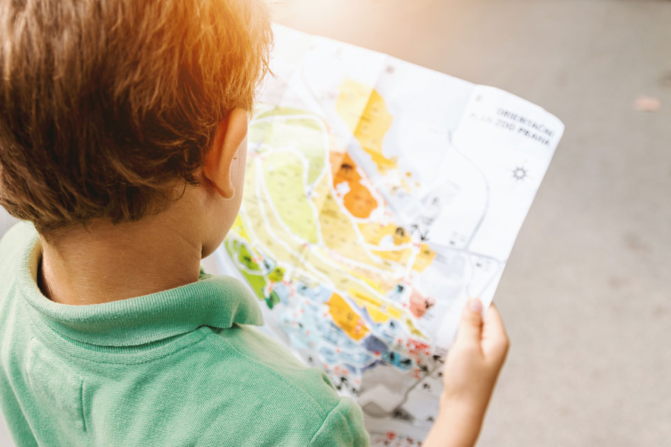 young boy studying a map