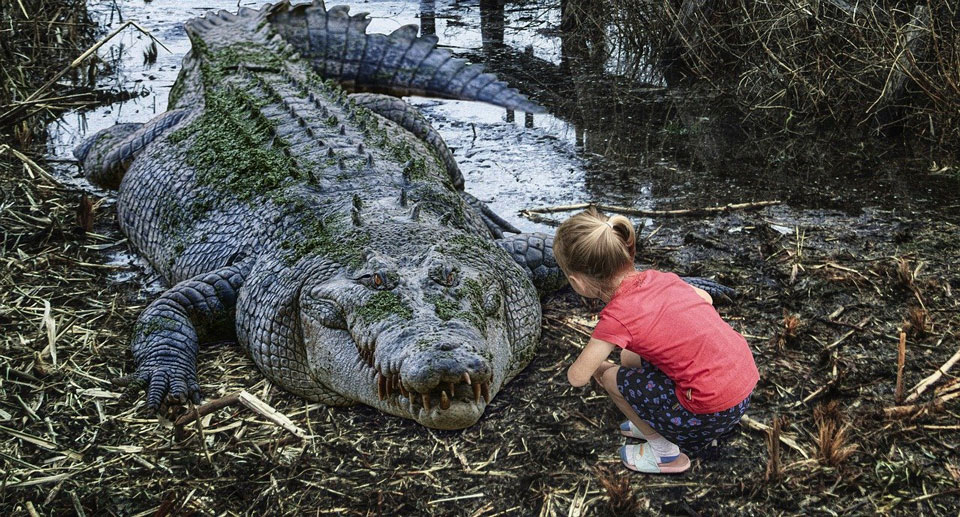 girl crouching down near a crocodile