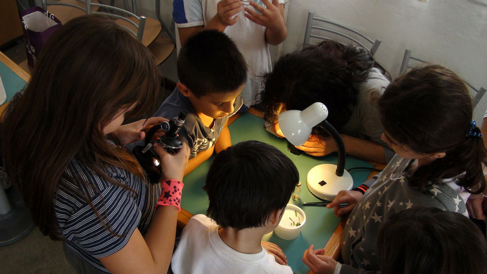 Group of children gathered doing science