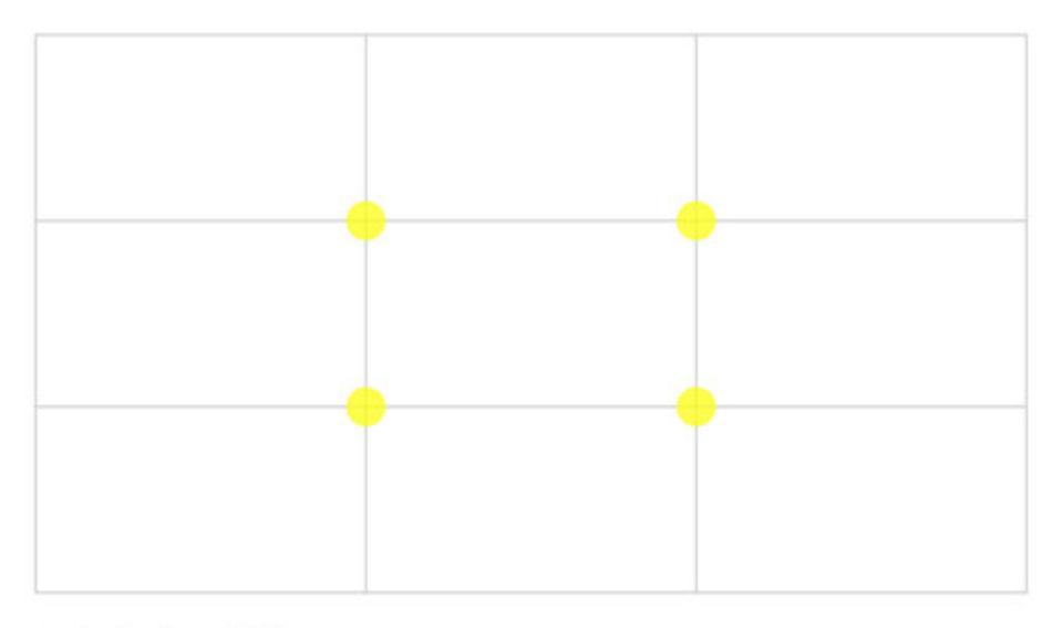 Photographic composition grid