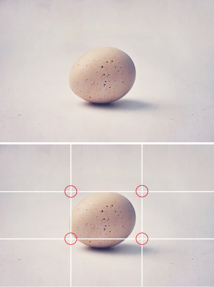 Egg marked up with grid, showing placement that isn't rule of thirds