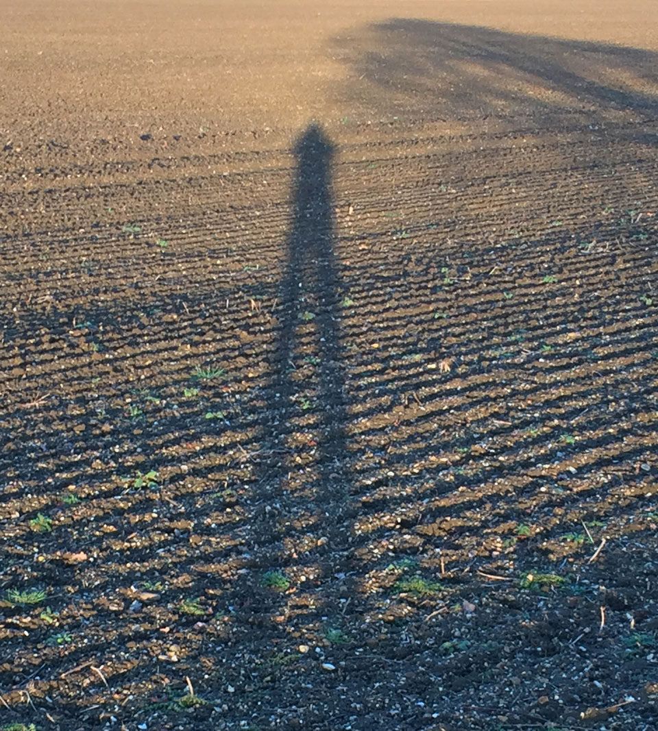 Silhouettes - cast shadows across a field of pylon and furrows