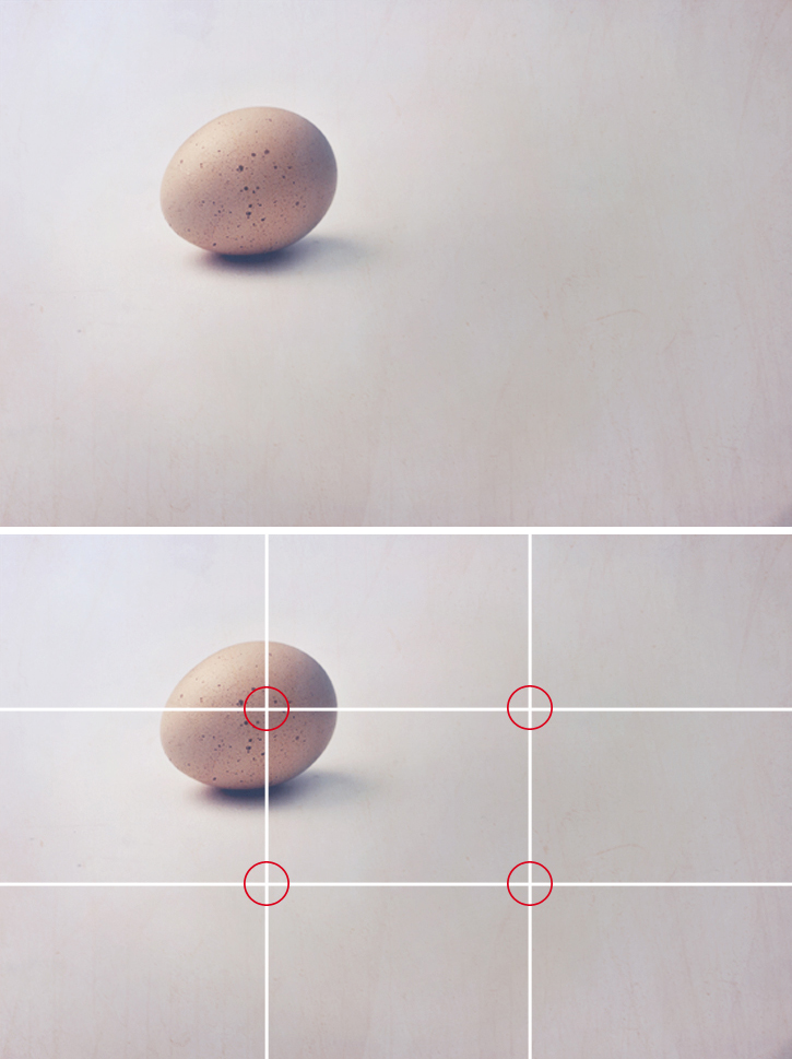 Egg marked with photographic grid showing rule of thirds