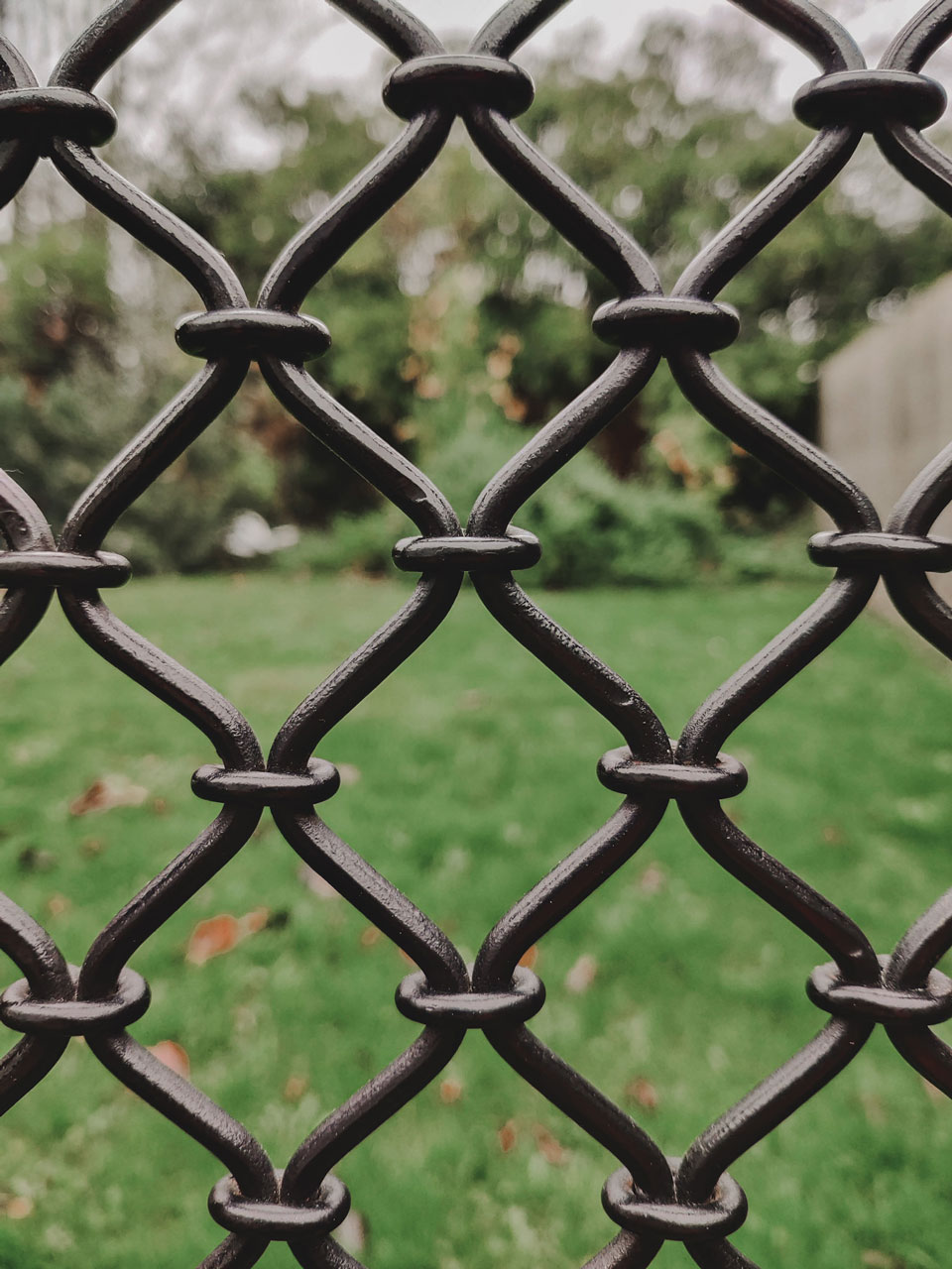 Photo showing focus on a wire fence