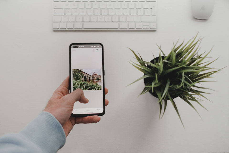 Mobile phone against a white background with a keyboard and plant