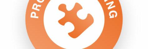 skills builder logo problem solving