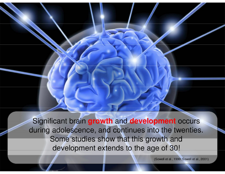 brain and information about brain growth and development during adolescence