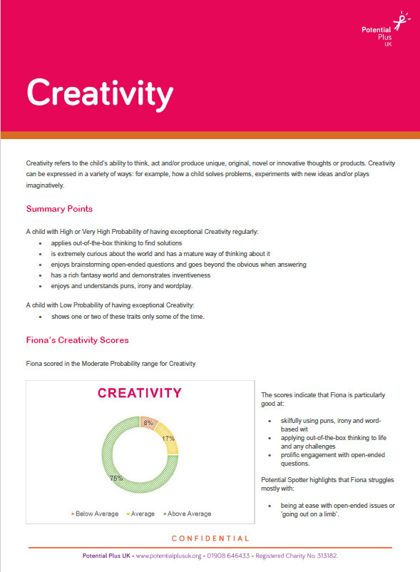 Example Creativity Page from Potential Spotter