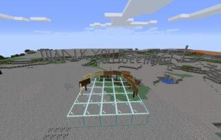 screenshot of minecraft thank you