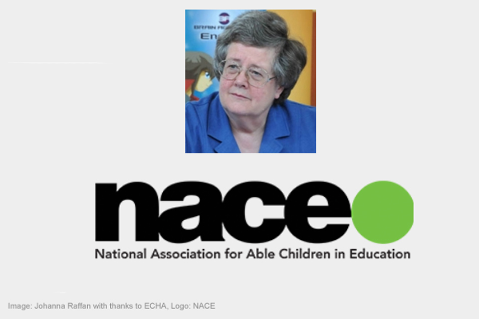 Johanna Raffan. Image acknowledgements: Johanna Raffan by ECHA, logo by NACE